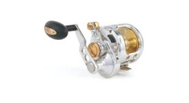 Saltwater Reels category