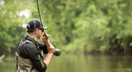 Pursuit Fishing Packages category