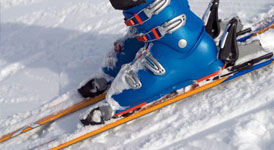 Ski Boots category