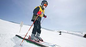 Youth Skis category